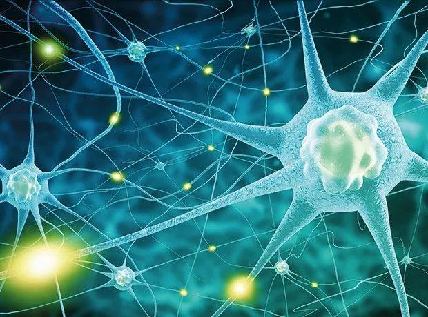 详解FDA最新阿尔茨海默病药物开发指南